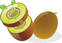 dessin-kiwi-mda