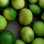limequats-MDA